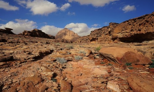 Zdjecie JORDANIA / Wadi Rum / . / W pełnej krasie