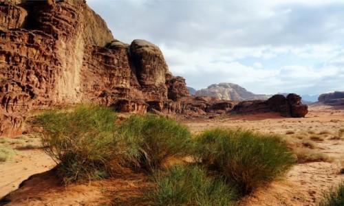 JORDANIA / Wadi Rum / Abu Khashaba Canyon / Nie tylko skały