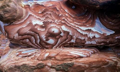 Zdjęcie JORDANIA / Petra / . / Formy i barwy natury