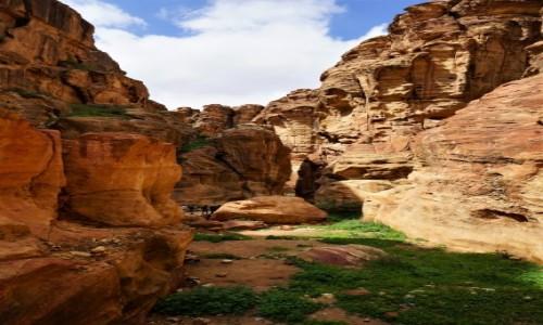 Zdjęcie JORDANIA / Muhafaza Ma'an / Petra / W drodze