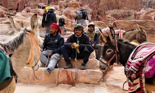 Zdjęcie JORDANIA / Muhafaza Ma'an / Petra / Obsługa osiołków