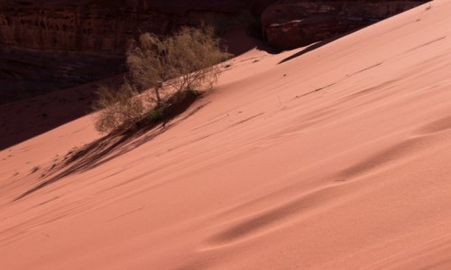 Zdjecie JORDANIA / Wadi Rum / Wadi Rum / Gra światła