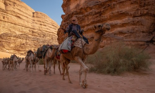 JORDANIA / Akaba / Wadi Rum / Karawana