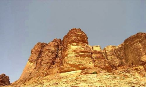 JORDANIA / brak / Okolice Wadi Rum /  Bogactwo natury