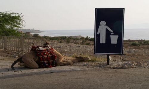 Zdjecie JORDANIA / brak / Jordania / Morze Martwe / Strefa niskiego ciśnienia