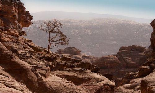 Zdjęcie JORDANIA / Petra / Petra / w drodze do Monastyru