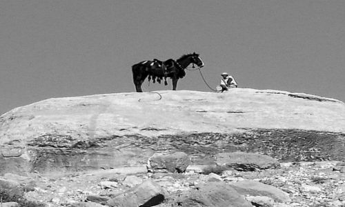 Zdjęcie JORDANIA / brak / Petra / koń vel kozica