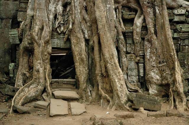 Zdjęcia: Angkor k/Siem Reap, Świątynie Angkoru, KAMBODżA