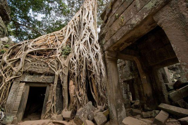 Zdjęcia: ANGOR wAT, ANGOR WAT 2, KAMBODżA