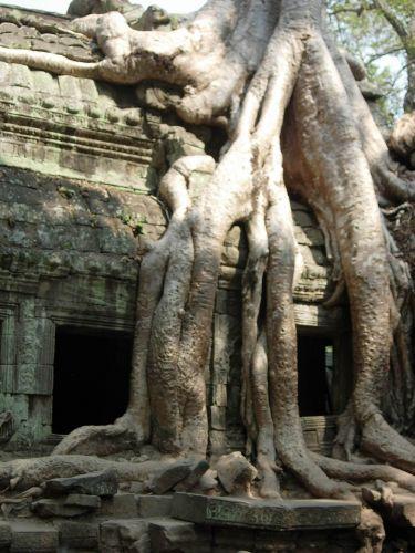 Zdjęcia: Angkor Wat, Siem Reap, KAMBODżA