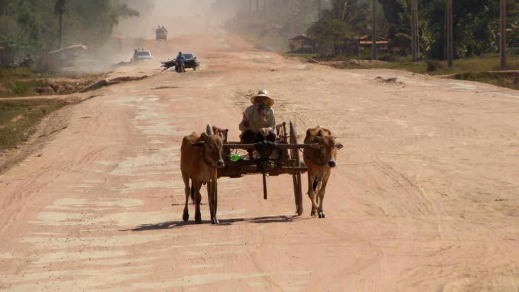 Zdjęcia: gdzieś po drodze, bezdroża, KAMBODżA