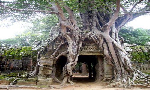 Zdjęcie KAMBODżA / okolice Siem Reap / zespół Angkor Wat / przejście w inny czas