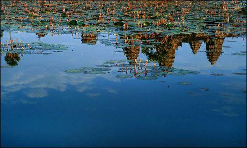 Zdjęcie KAMBODżA / Siem Reap / Angkor Wat / w tafli wody