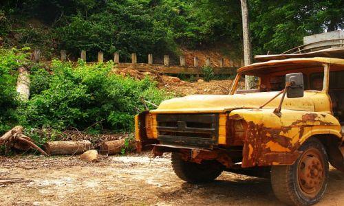 Zdjęcie KAMBODżA / Phnom Kulen / park narodowy / Myślicie, że ma OC?
