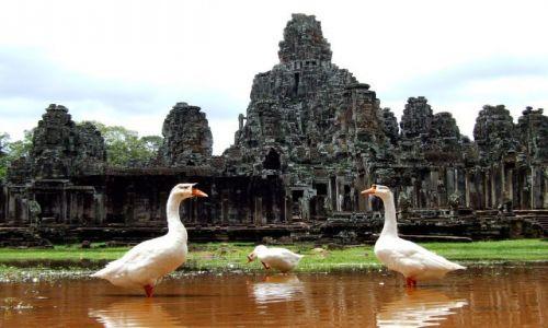 Zdjęcie KAMBODżA / Siem Reap / Kambodza / Angkor Wat