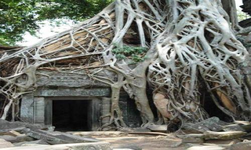 KAMBODżA / Sieam Reap / Angkor / Swiatynia