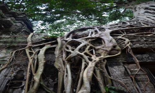 Zdjęcie KAMBODżA / Siem Reap / Angkor  / w krainie Khmerów...