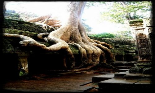 Zdjecie KAMBODżA / - / Angkor / Świątynia