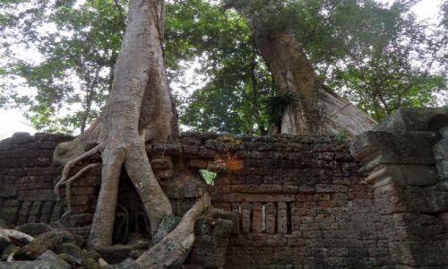 Zdjęcie KAMBODżA / siem reap / Angkor / angkor what? 2