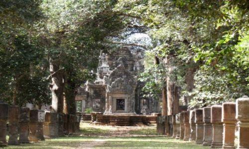 Zdjęcie KAMBODżA / siem reap / Angkor / Angkor what? 4