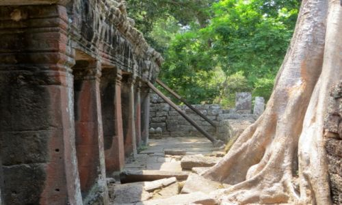 Zdjęcie KAMBODżA / ... / Angkor / ....