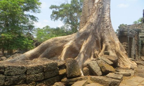 Zdjęcie KAMBODżA / ... / Angkor / ..