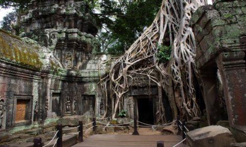 Zdjęcie KAMBODżA / Siem Reap / Angkor / Świątynia Ta Prohm