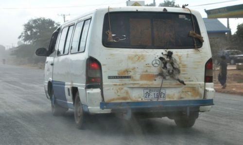 Zdjecie KAMBODżA / środkowa Kambodża / szosa krajowa nr 6 / Widziane z samochodu - przewóz żywych kaczek!!!