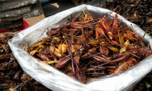 KAMBODżA / Siem Reap / stragan uliczny / Chipsy?