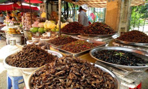 Zdjęcie KAMBODżA / Siem Reap / stragan przy ulicy / Skąd oni biorą takie ilości robali?
