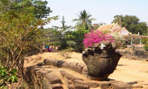 Zdjęcie KAMBODżA / Angkor / obok Świątyni Bakong / wąż Naga