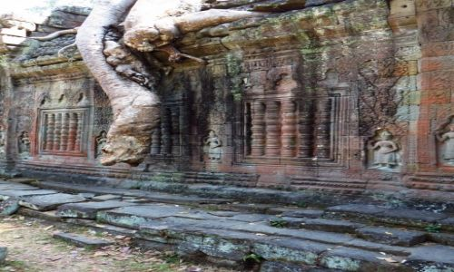 Zdjęcie KAMBODżA / Angkor / okolice Siem Reap / Świątynia Prah Khan