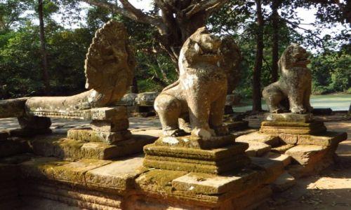 Zdjęcie KAMBODżA / Angkor / okolice Siem Reap / Swiątynia Banteai Kdei