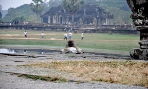 Zdjecie KAMBODżA / Siem Reap / Angkor Wat  / Relax