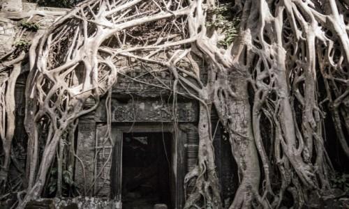 Zdjecie KAMBODżA / Siem reap / Angkor wat / Tajemne wejście