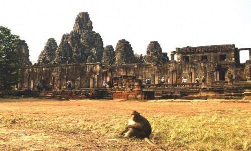 Zdjecie KAMBODżA / - / Angkor / Angkor Cambodia