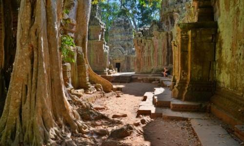 KAMBODżA / Angkor / Angkor / Magiczny Angkor