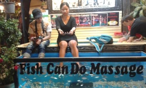 Zdjecie KAMBODżA / - / Siem Reap / Fish masaż