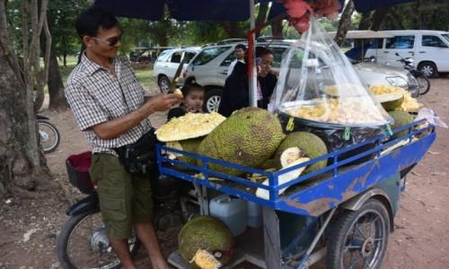 Zdjecie KAMBODżA / - / Siem Reap / Świeże owoce chlebowca
