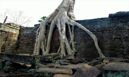 Zdjęcie KAMBODżA / Siem Reap / Preah Khan / Angkor