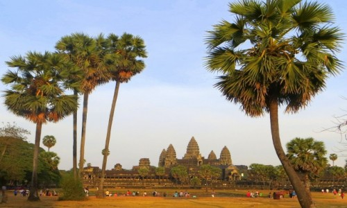 Zdjęcie KAMBODżA / Prowincja Siem Reap / Angkor Wat / Za palmami