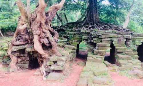 Zdjecie KAMBODżA / SIEM REAP / Angkor Wat / AZJA TRIP