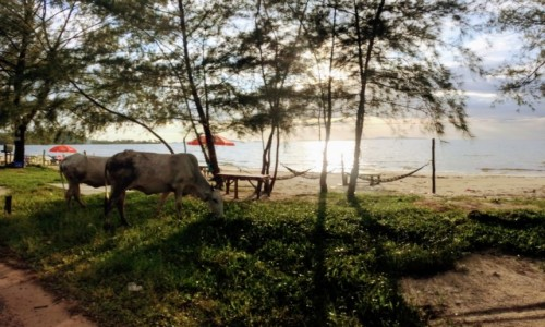 Zdjecie KAMBODżA / Sihanoukville / Sihanoukville / AZJA TRIP