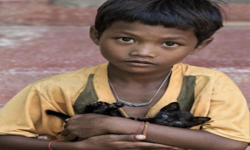 KAMBODżA / Prowincja Phnom Penh / Wat Ounalom / Oswajanie nieszczęścia ;-)