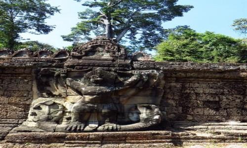 Zdjecie KAMBODżA / Angkor / okolice Siem Reap / Świątynia Prah Khan - płaskorzeźba Garudy