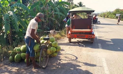 Zdjęcie KAMBODżA / okolice Kampotu / - / Jak przewieźć dużo kokosów - rowerem też się da