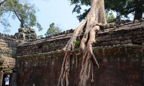 KAMBODżA / Siem Reap / Ankor Wat / Ankor Wat