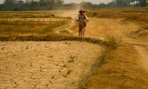 Zdjecie KAMBODżA / brak / Kratie-Pólnocna Kambodża / Kratie