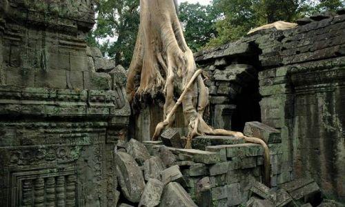 Zdjęcie KAMBODżA / brak / Angkor k/Siem Reap / Świątynie Angkoru