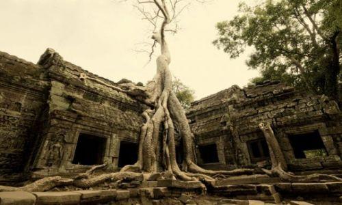 Zdjęcie KAMBODżA / Siem Reap / Siem Reap   ANGKOR WAT / Fotka 01